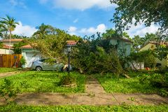 Orkan Irma Aftermath Arkivbilder
