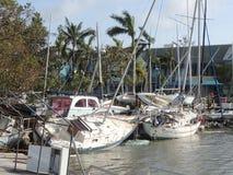 Orkan Irma Damage Arkivfoto