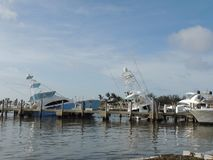 Orkan Irma Damage Arkivfoton