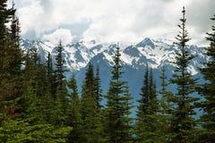 Orkan Ridge av den olympiska nationalparken, WA, USA Royaltyfria Bilder