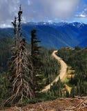Orkan Ridge, olympisk halvö, Washington Royaltyfria Foton