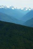 Orkan Ridge, Washington Arkivfoton