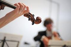 Orkester av klassisk musik med fiolen Royaltyfri Bild