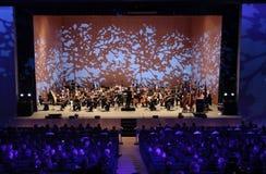 Orkester på etapp royaltyfria foton
