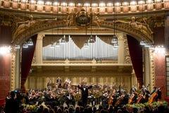 Orkesterledare Royaltyfri Bild