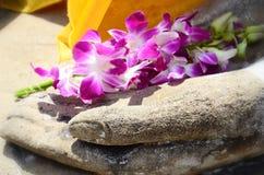Orkidé i handbild av buddh Royaltyfri Bild