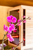 Orkidé och bastu Arkivbilder