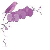 Orkidé och fågel royaltyfri illustrationer
