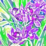 Orkidé Vattenfärgstylization digitalt avbilda royaltyfri illustrationer