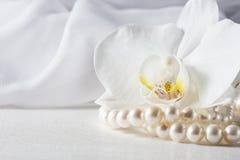 Orkidéblomma med en pärlemorfärg halsband Royaltyfri Foto