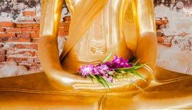 Orkidén är på handen av den buddha statyn Royaltyfri Foto