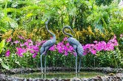 Orkidéträdgård, del av botaniska trädgårdar i Singapore Arkivfoto