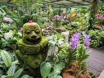 Orkidéträdgård på Singapore botaniska trädgårdar Arkivbilder