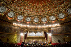 Orkiestra dyrygent fotografia stock