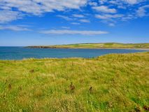Orkney Island coastline with blue skies royalty free stock photo