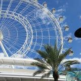 Orlando Eye Royalty Free Stock Images