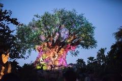 Tree of Life at the Animal Kingdom at Walt Disney World Stock Photography
