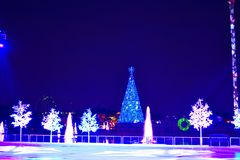 Ice skating scene ,holidays trees, sky tower, on lake and colorful Christmas Tree background in International Drive area. Orlando, Florida. November 20, 2018 stock images