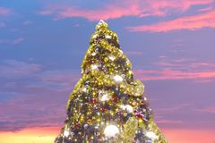 Orlando, Florida. November 15, 2018 Illuminated Christmas Tree on open mall background in Lake Buena Vista area stock photo