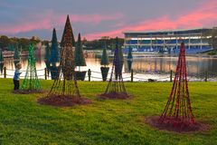 Nice little boy looking at Christmas trees on Lake and Stadium background at sunset in International Drive area. Orlando, Florida. November 19, 2018. Nice stock photos