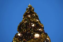 Top view of beautiful Chritsmas Tree in Lake Buena Vista area. royalty free stock images
