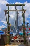 Orlando, Florida, USA - May 10, 2018: the jaws of a shark at park Universal Studios. Orlando is a theme park resort in. Orlando, Florida, USA - May 10, 2018: the Stock Photography