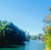 Orlando, universal park. Nature, tree, sund Stock Photo