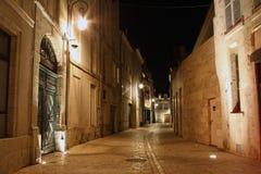 Orleans (Frankrike) på natten Royaltyfri Bild