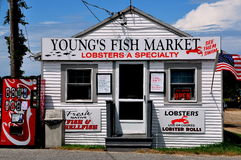 Orleans, MA: Young's Fish Market & Restaurant Stock Image