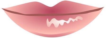Orli lucidi dentellare Fotografia Stock