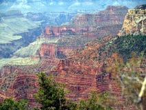 Orlo del nord del grande canyon Fotografie Stock Libere da Diritti
