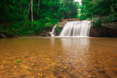 Orlo del parco nazionale della cascata di Mae Sa a marzo, Chiang Mai, Tailandia Fotografia Stock Libera da Diritti