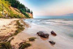 Orlowo峭壁在波罗的海的 库存图片