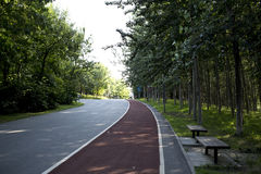 Orly Beijing Olympic Forest Park Racetrack Stock Photos
