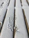 Orma sopra neve recente in un percorso di legno immagini stock