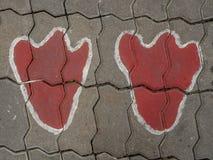 Orma sul pavimento Immagini Stock Libere da Diritti
