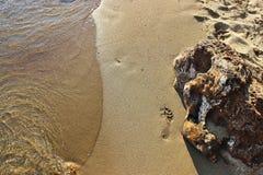 Orma sulla sabbia Fotografie Stock Libere da Diritti