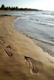 Orma sulla sabbia Immagini Stock