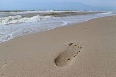 Orma sulla sabbia sulla spiaggia del mare Fotografia Stock Libera da Diritti