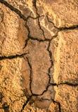 Orma umana su un suolo incrinato della terra Immagine Stock Libera da Diritti