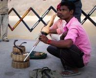 Ormcharmör i Jaipur, Indien arkivbild