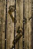 Orme Fotografie Stock
