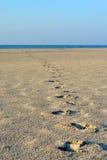 Orme alla spiaggia Fotografie Stock