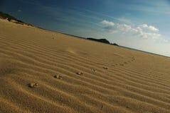 Orme del gabbiano alla spiaggia di Chia Fotografia Stock Libera da Diritti
