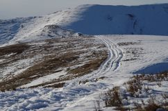 Orme del paesaggio di inverno di Carpatian nella neve Immagine Stock
