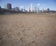 Orme dell'oca in Chicago Fotografia Stock