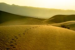 Orme in dune del deserto del parco nazionale di Death Valley L'immagine del paesaggio che comprende l'auto scopre e la perseveran Fotografia Stock