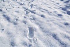 Orme nel Neve-paesaggio Immagine Stock Libera da Diritti