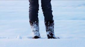 Orme nella neve video d archivio