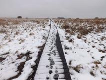 Orme nella neve Fotografie Stock